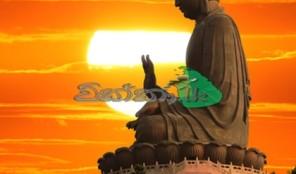 Buddhist Tours India
